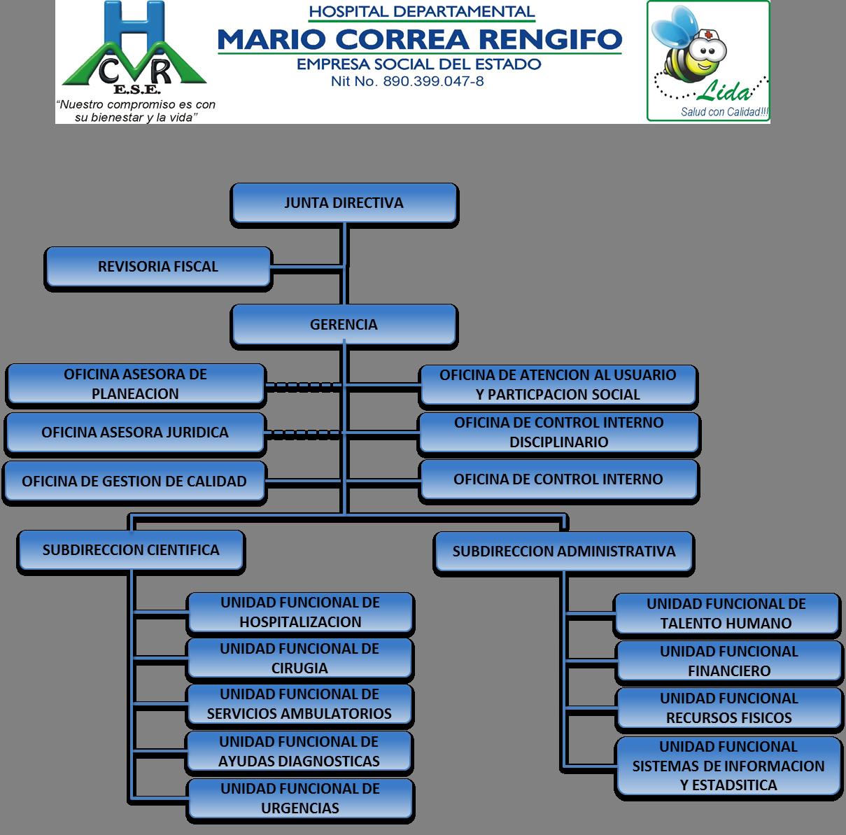 Estructura Organización